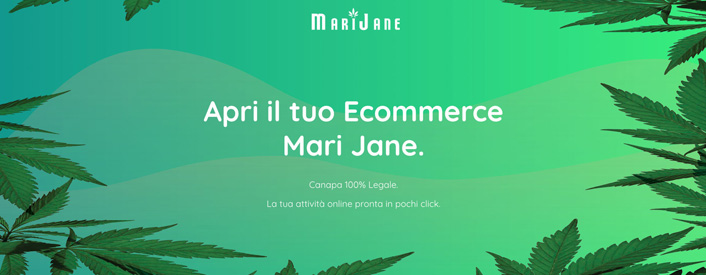 cannabis online dropshipping aprire