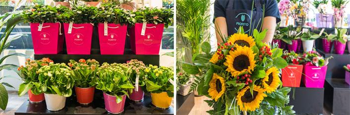 Franchising Fiori E Piante : Fiorito franchising fiori e piante