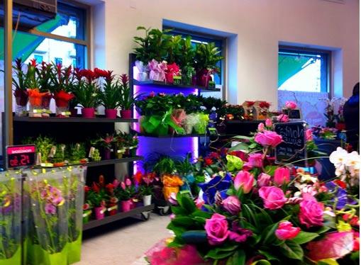 come aprire un negozio di fiori - Idee Arredamento Negozio Fiori