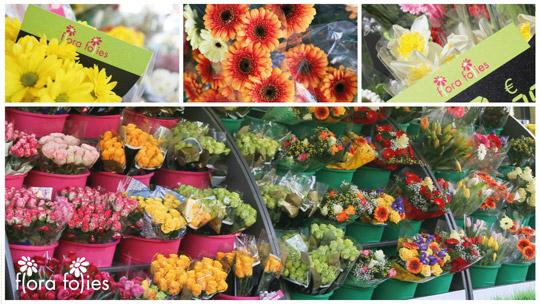 Franchising Fiori E Piante : Con flora folies puoi avere un lavoro appagante creativo